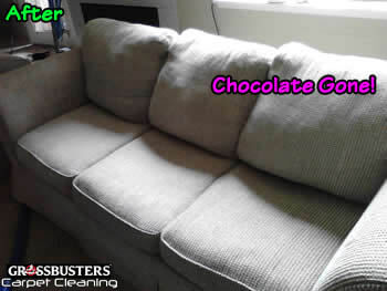 Upholstery Cleaning Dupont WA - After